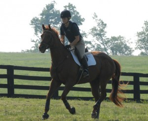Canter/Gallop Set