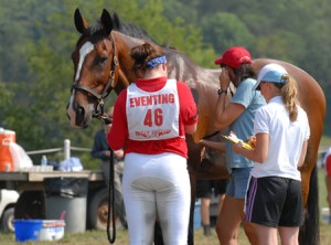 Equine Metabolic Syndrome Part 2