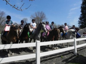 Join the Plus 1 Challenge! Radnor Hunt Pony Club has!