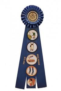 badge book pic 2