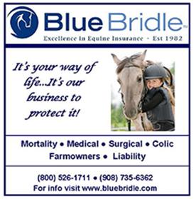 visit www.bluebridle.com
